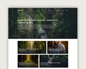 Forest – Free PSD Template