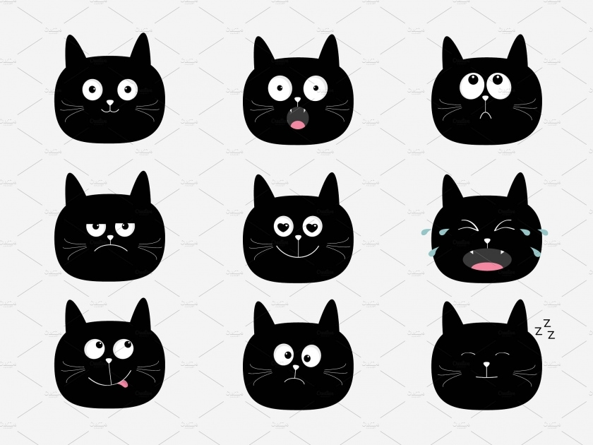 Cat heads with different emotions