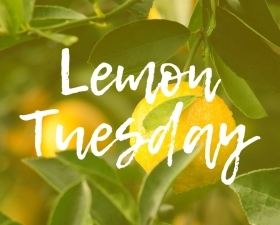 Lemon Tuesday Free Handwritten Font