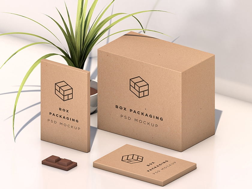 Isometric Box Packaging Mockup Fluxes Freebies
