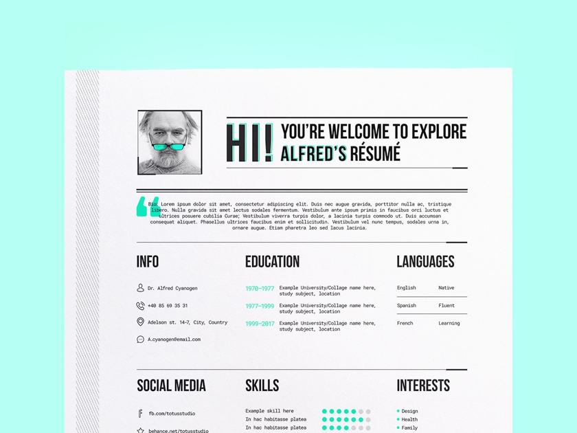 free illustrator resume  cv template